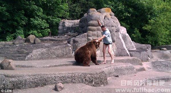 男子暴打母熊是坑熊,我妈是站长简直就是坑娘啊