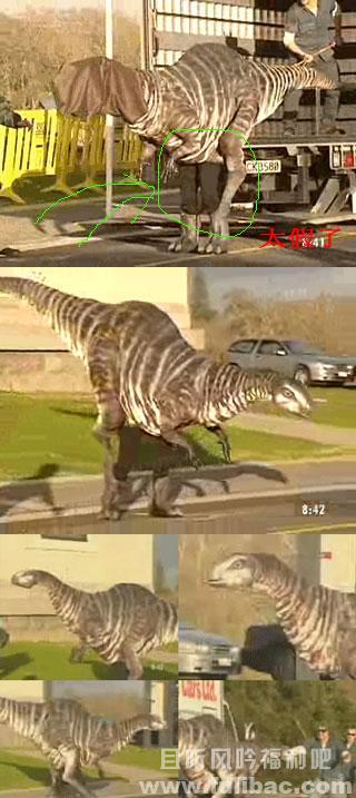 新西兰活捉一只恐龙 新西兰人真的是闲得蛋疼啊