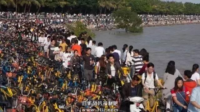 共享单车之痛 中国城市目前或许还配不上共享单车